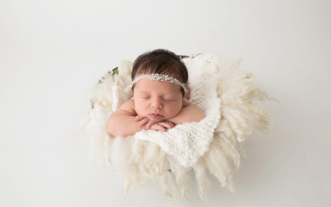 Audrey- Bendigo Newborn Photographer