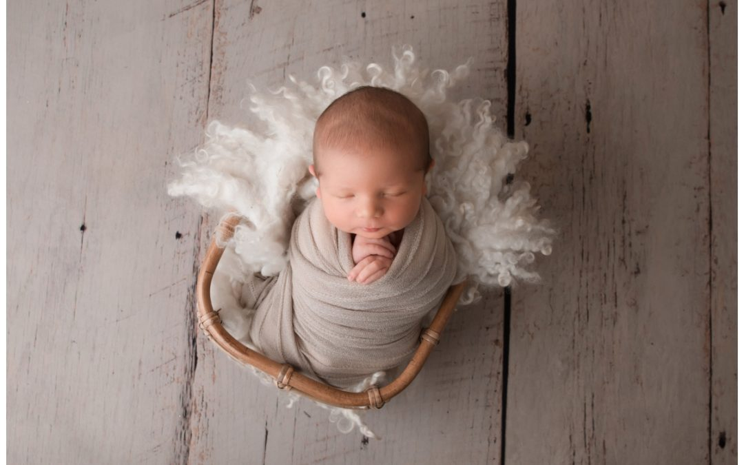Jack- Bendigo Newborn Photographer